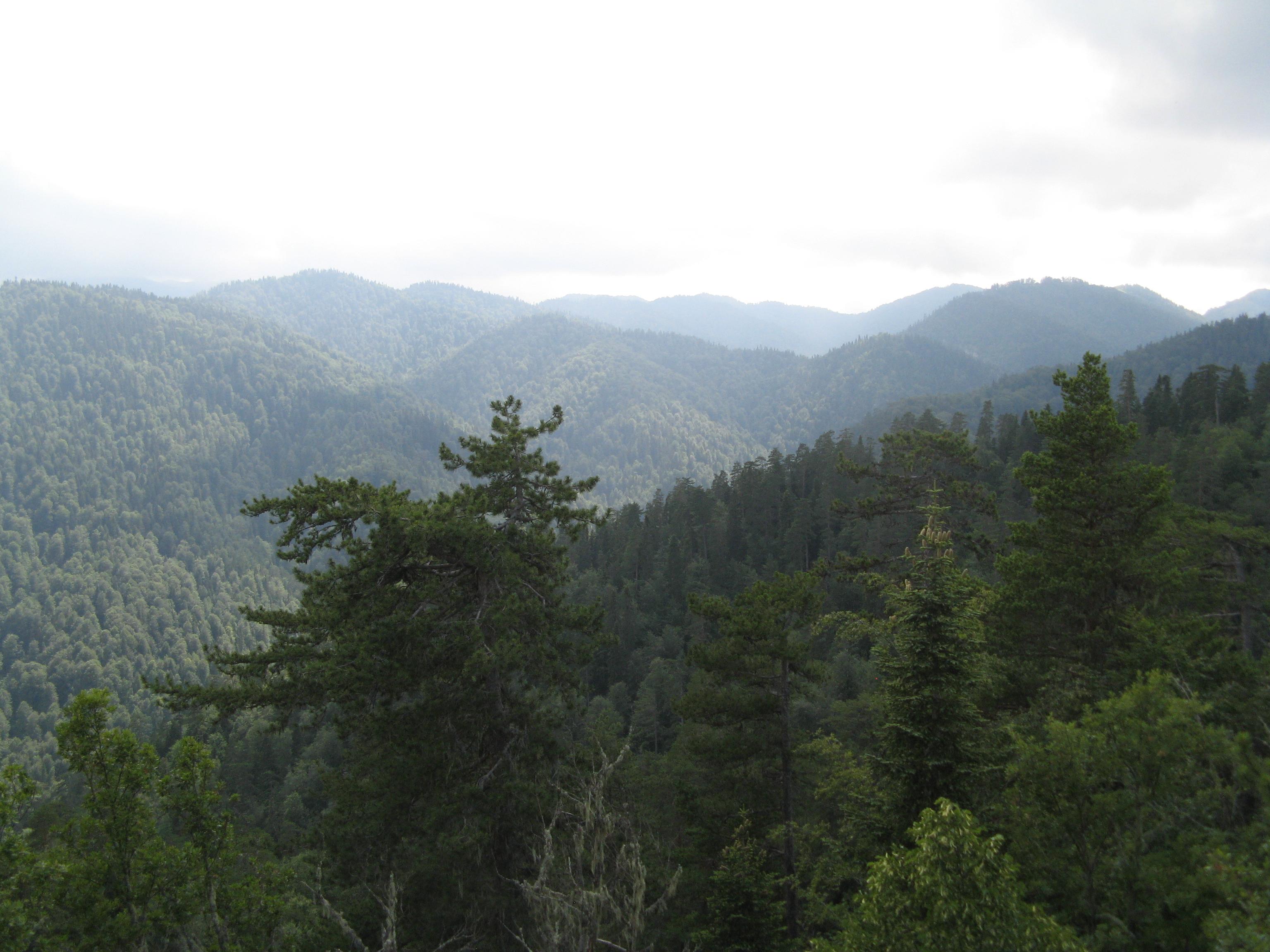 Filepontic Mountains Yedigöller Panoramiojpg Wikimedia Commons
