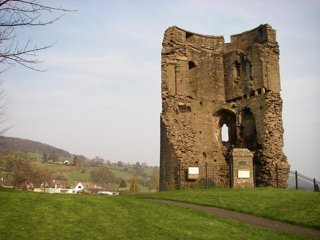 Remains of Crickhowell Castle - geograph.org.uk - 385555