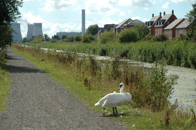 Sankey St.Helens Canal - geograph.org.uk - 40430