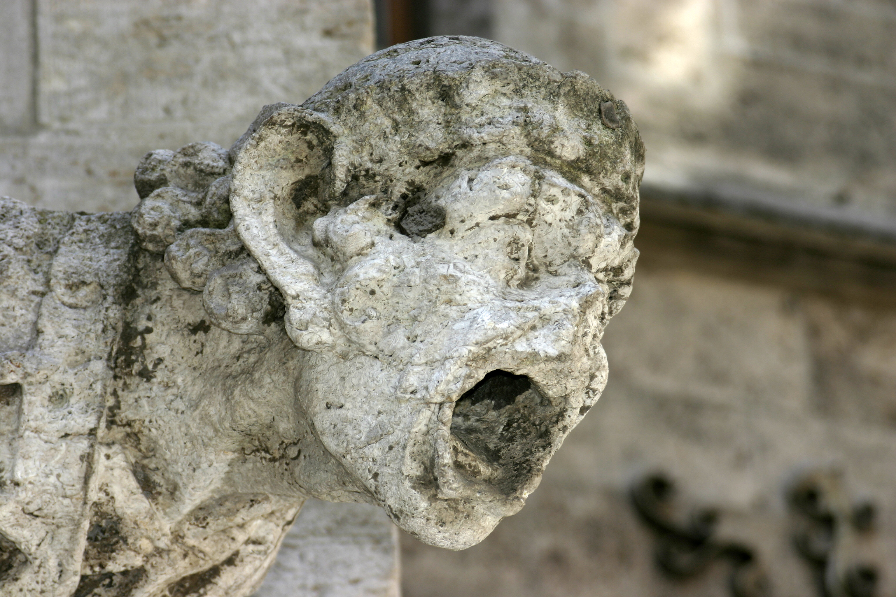 Acid rain damaged gargoyle. Image and caption courtesy Nino Barbieri via Wikimedia Commons.
