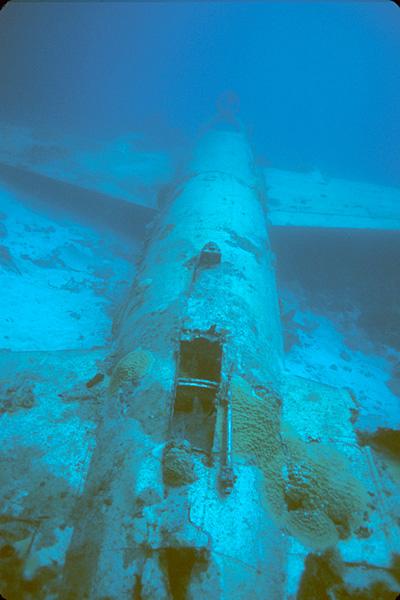 dive: Chuuk Lagoon (Micronesia)
