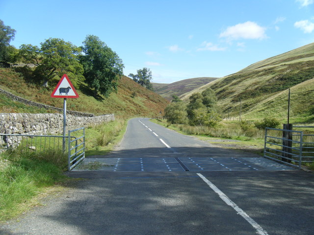 https://upload.wikimedia.org/wikipedia/commons/5/54/Cattle_grid_on_B797_to_Wanlockhead_-_geograph.org.uk_-_1503852.jpg