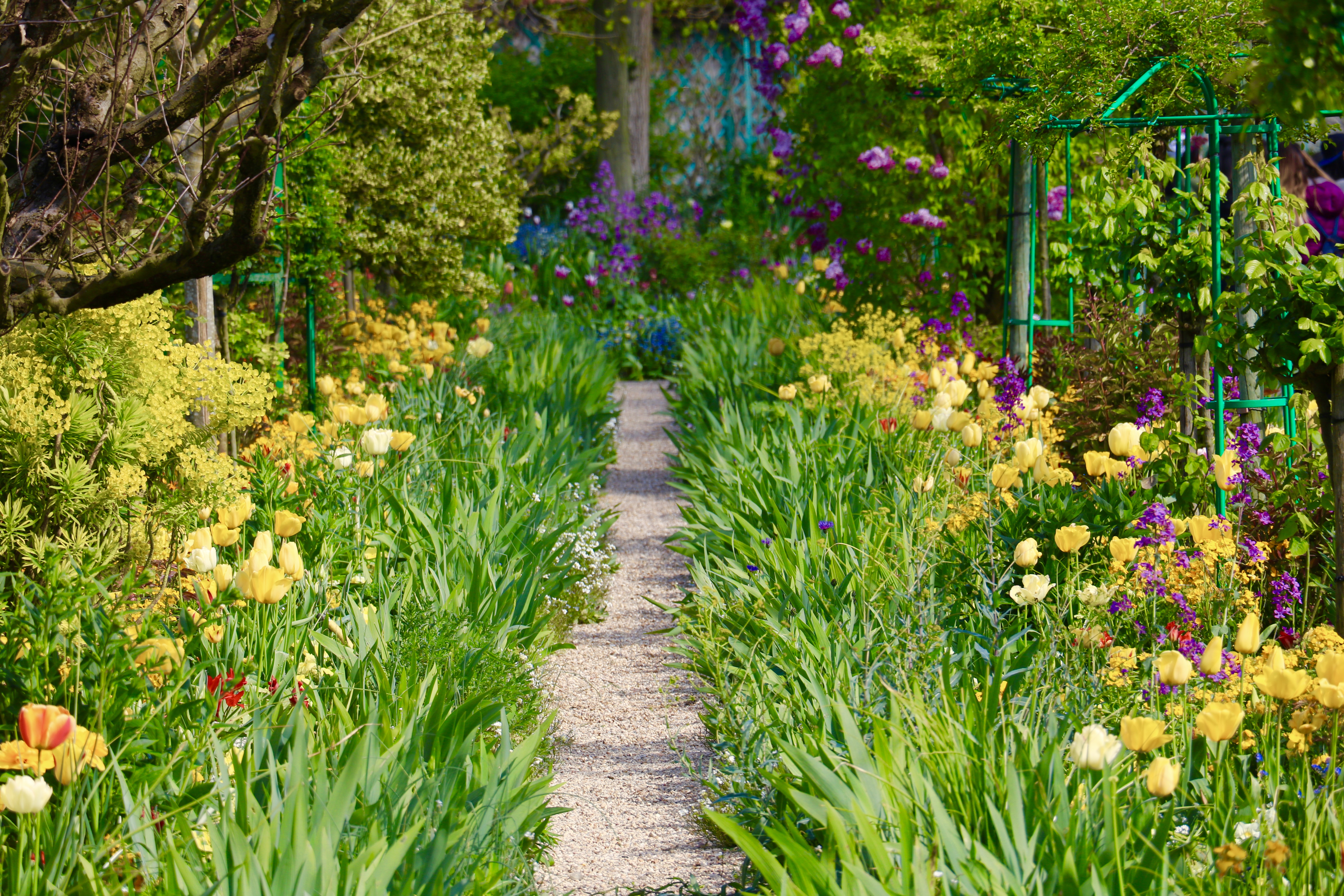 File:Claude Monetu0027s Garden In Giverny, France, April 2017