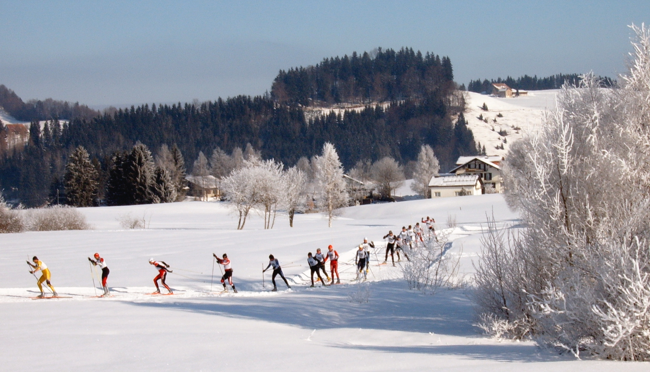 Cross-country skiing (skating style) in Einsiedeln, Switzerland.