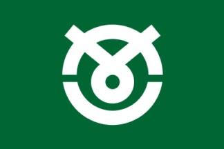 File:Flag of Hakui Ishikawa.JPG