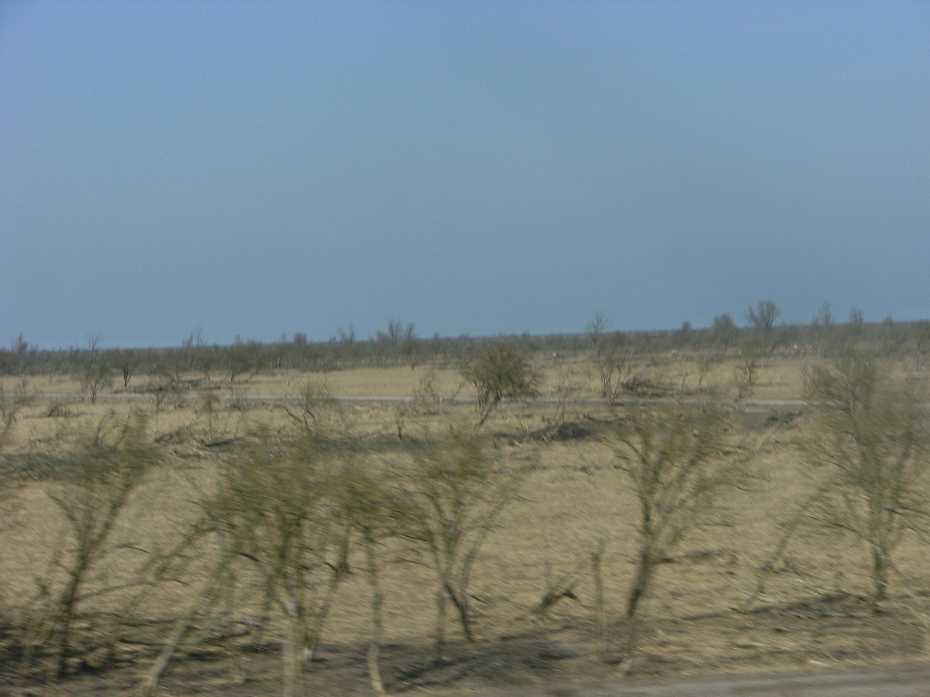 File:Flevoland landscape seen from train Almere - Lelystad 2.JPG