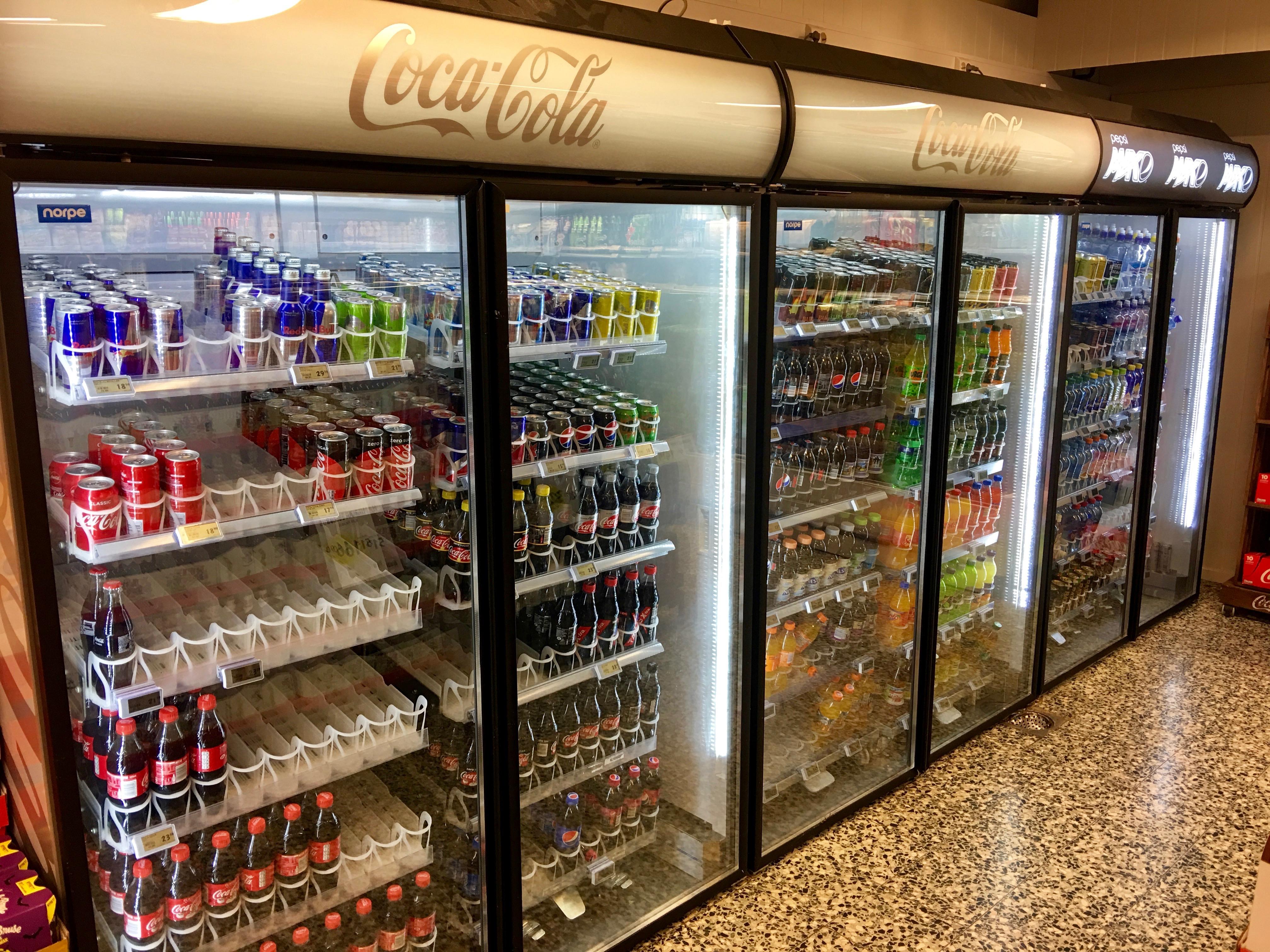 Fileglass Door Freezer Display Cabinets Refrigerator Chiller