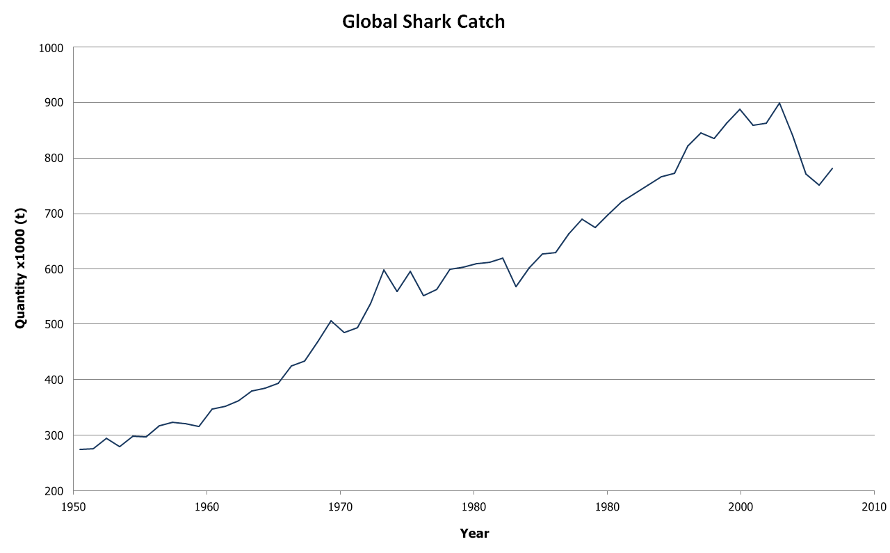 Graph of shark catch from 1950 to 2007, linear growth from less than 300,000 tons per year in 1950 to about 850,000 in 2000