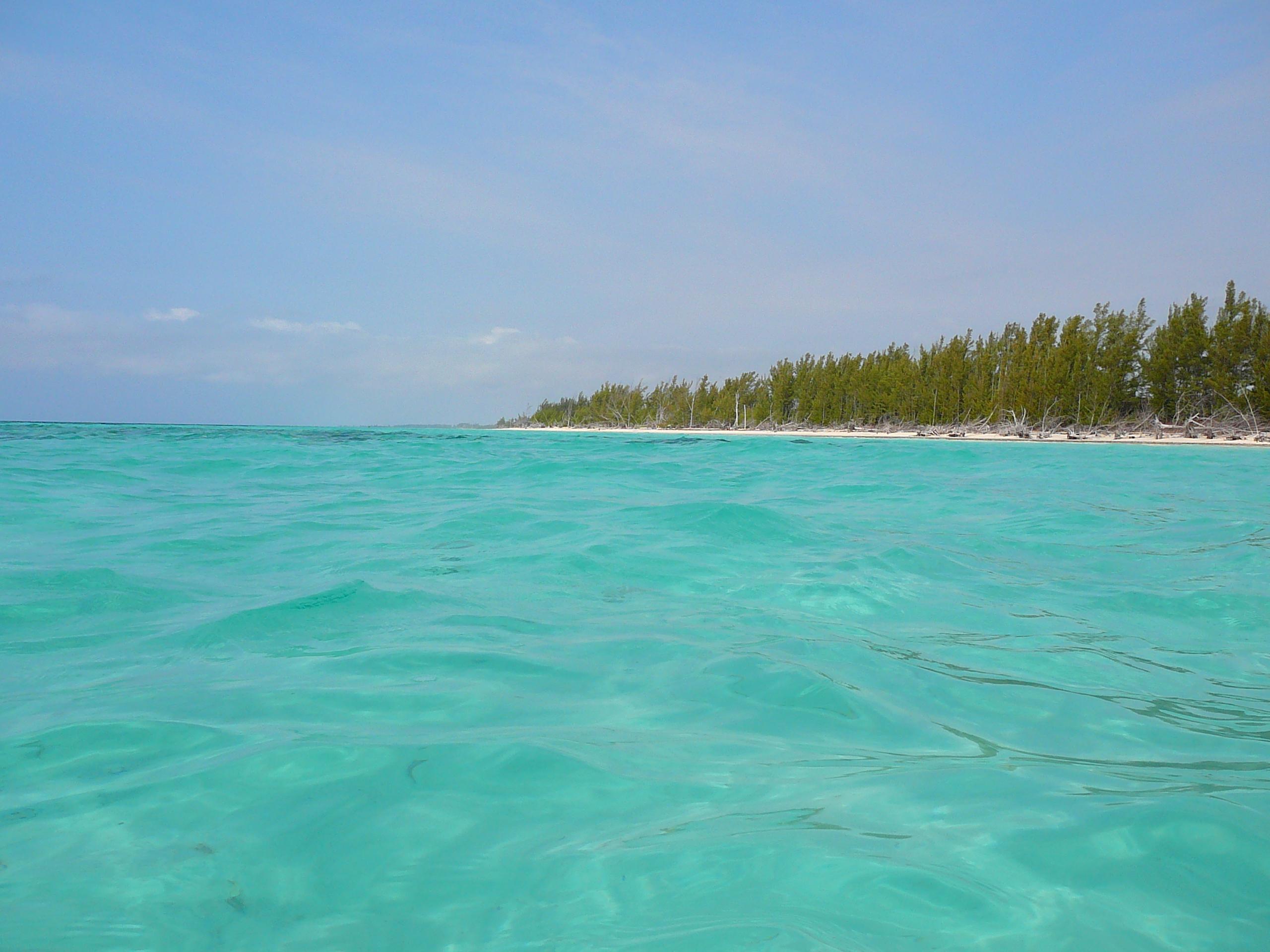 Gold Rock Beach On Grand Bahama Island