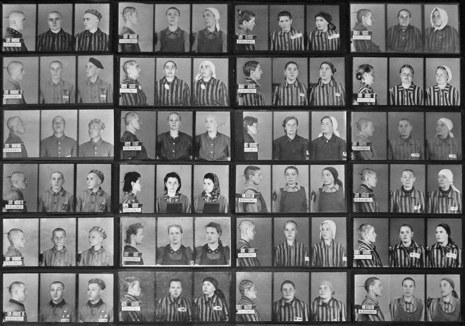 Opferzahlen Der Konzentrationslager Auschwitz Wikipedia
