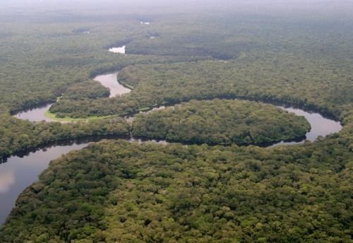 File:La rivière Lulilaka, parc national de Salonga, 2005.jpg