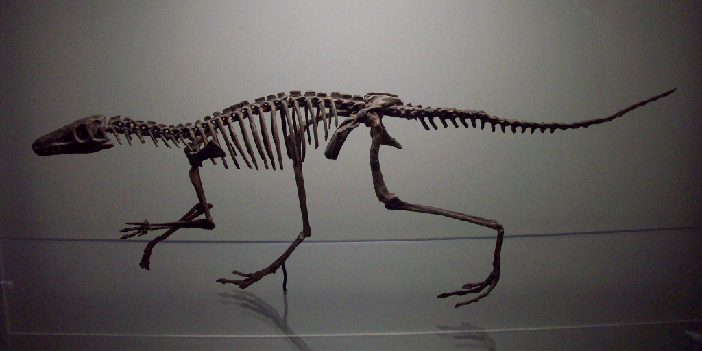 Dinosaurios argentinos