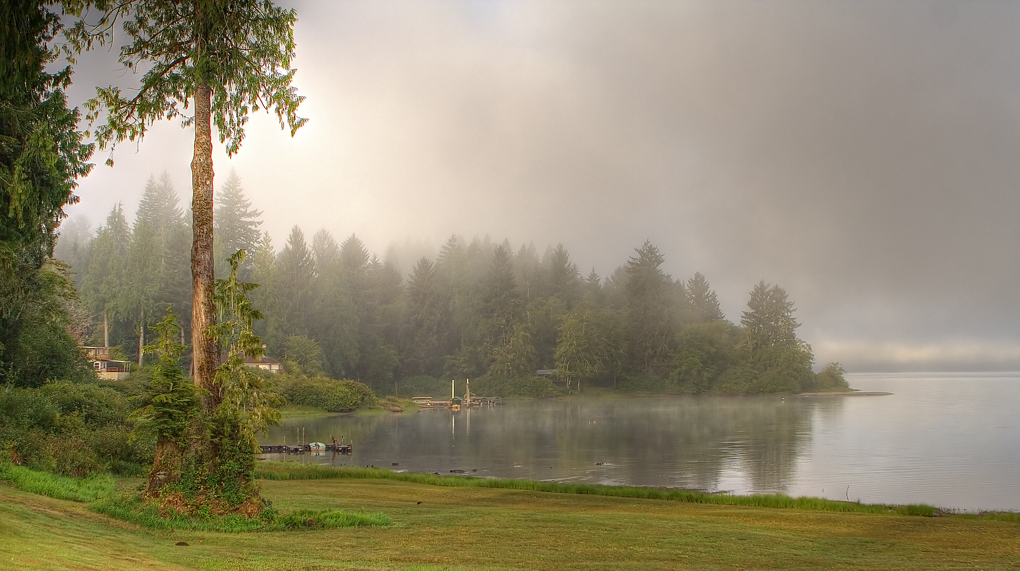 File:Lake Quinault - Misty Morning - Flickr - rachel ...