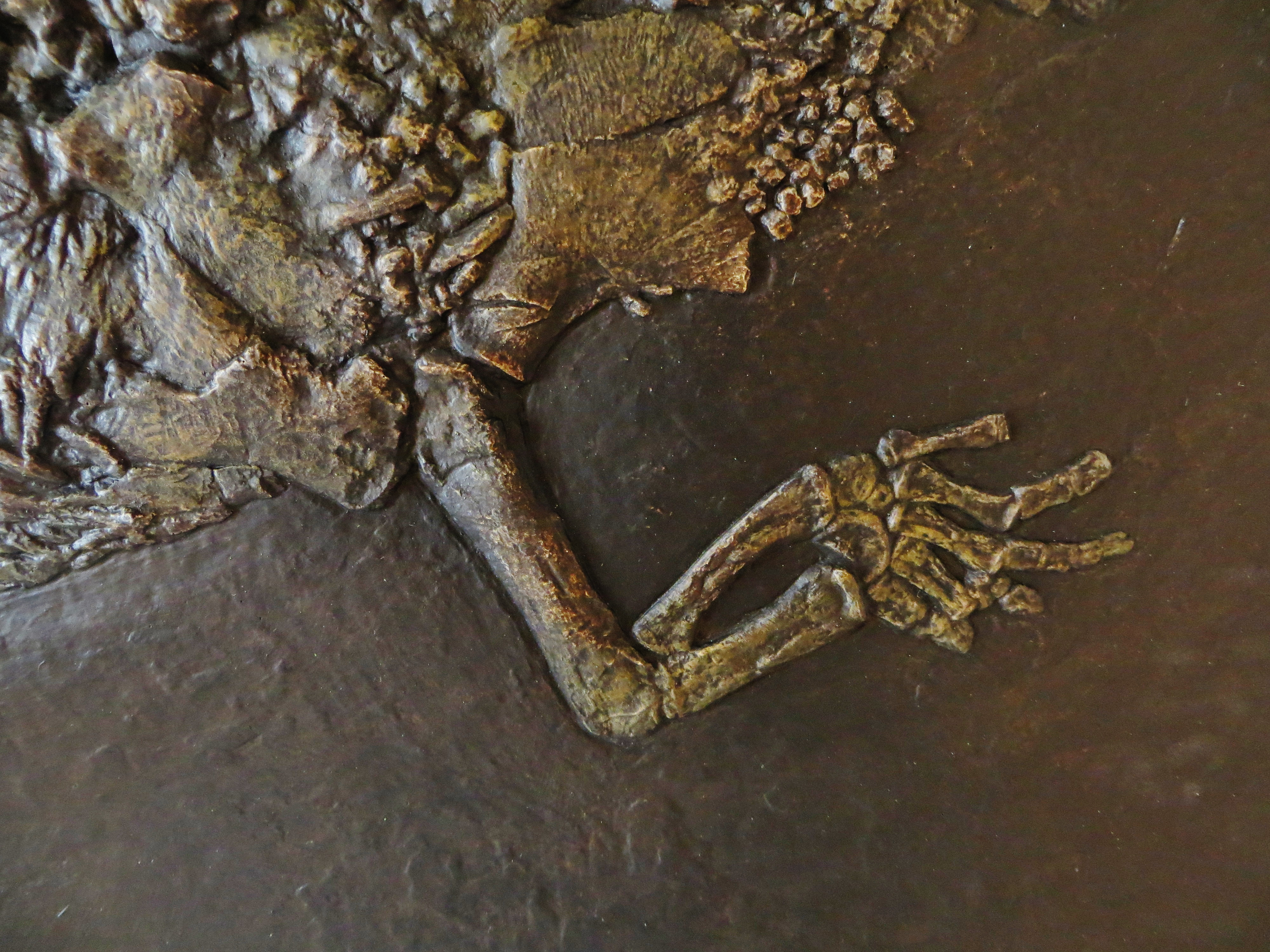 filelariosaurus balsami 343456jpg