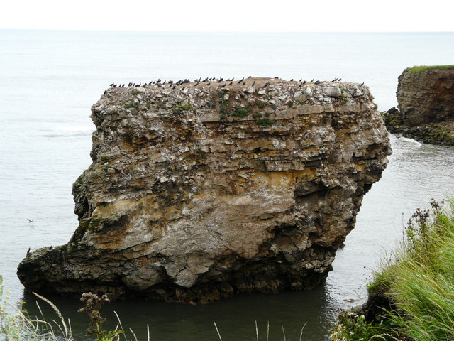 Marsden Rock - geograph.org.uk - 918267