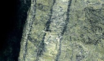 Een ader in een peridotiet, gevuld met de vezelige mineralen chrysotiel en serpentiniet. Beide ontstaan door een reactie van olivijn (een mineraal waar peridotiet grotendeels uit bestaat) met water.