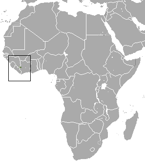 The average litter size of a Nimba otter shrew is 3