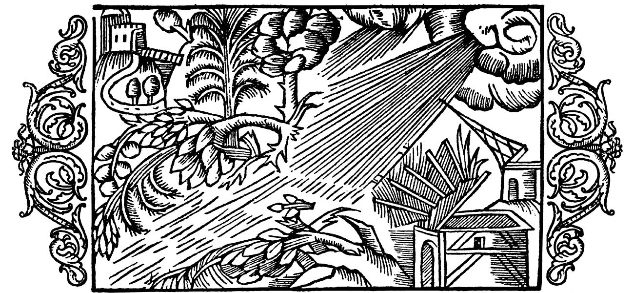 Olaus Magnus - On the Fury of Cyclones and Hurricanes.jpg