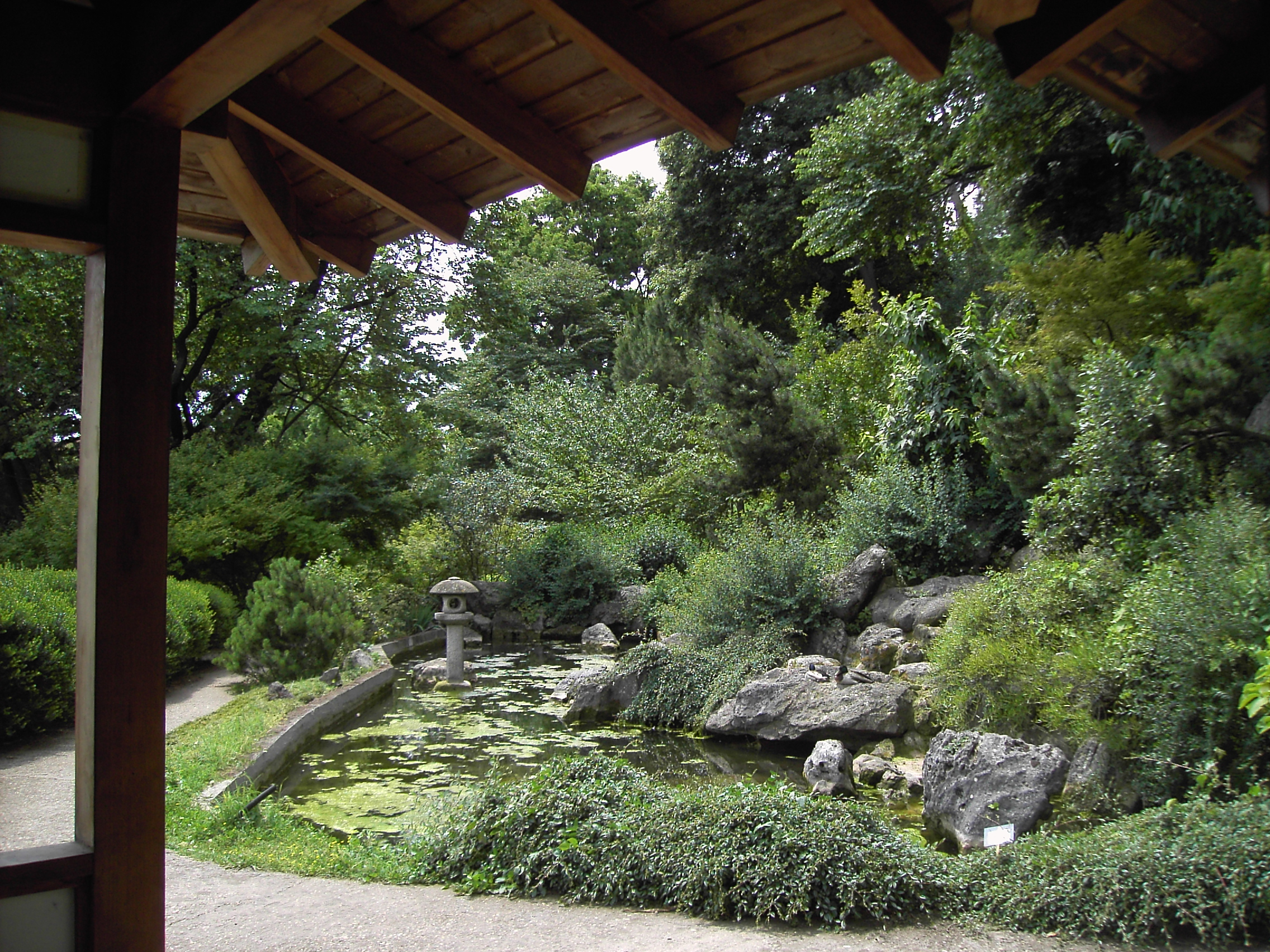 File orto botanico il giardino giapponese 2747 jpg for Il giardino di zen