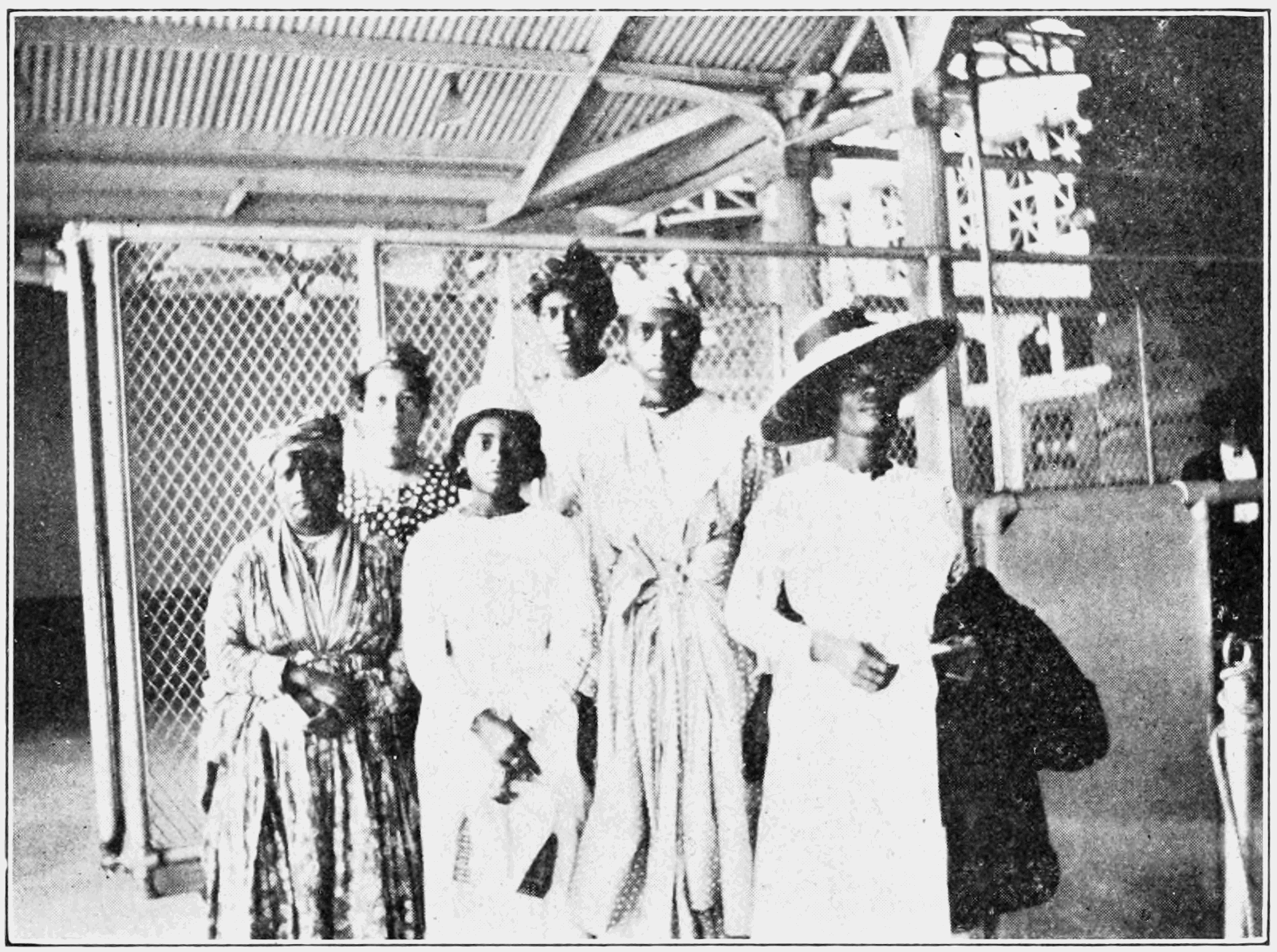 PSM V80 D395 African americans from the west indies.png