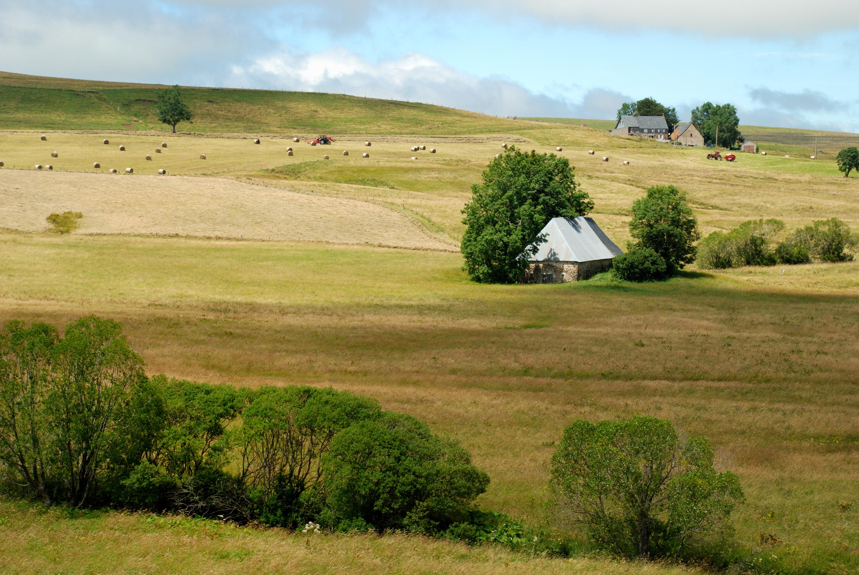 Paysage 2000 avec file:paysage jassy 0707 - wikimedia commons