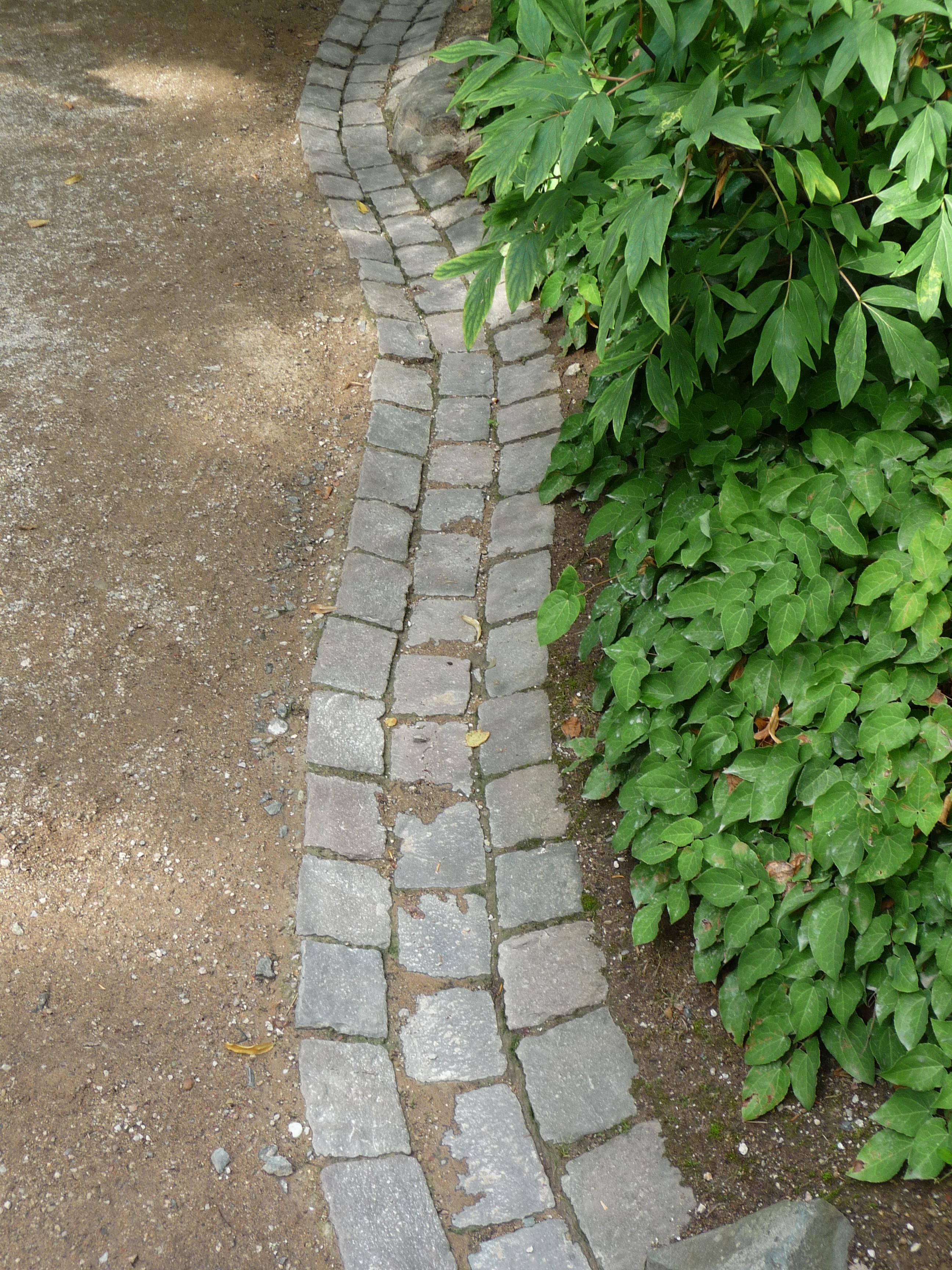 Filerinne Japangarten Kaiserslautern 01jpg Wikimedia Commons