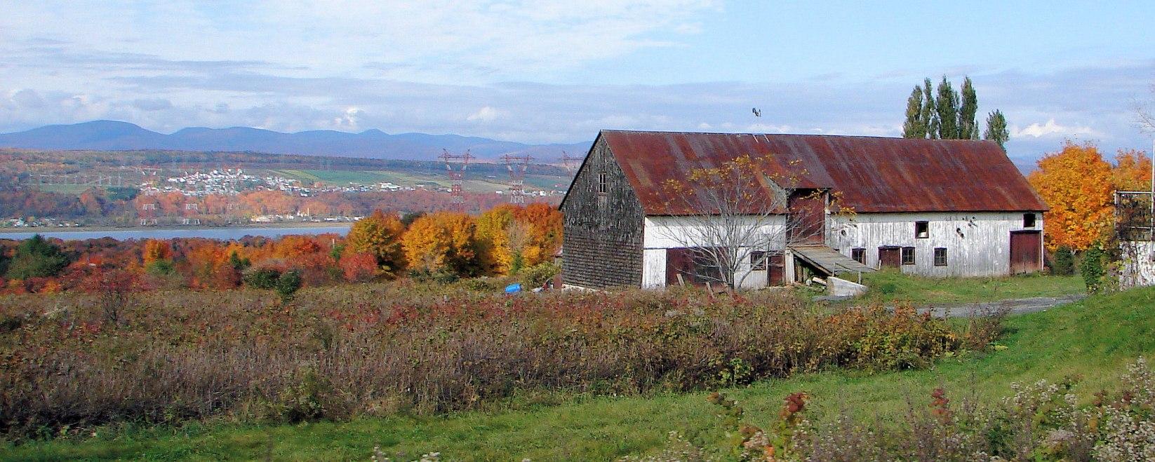File saint pierre de l ile d wikimedia commons for Maison pierre modele orleans