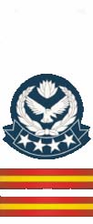 Senior Warrant Officer baf.jpeg