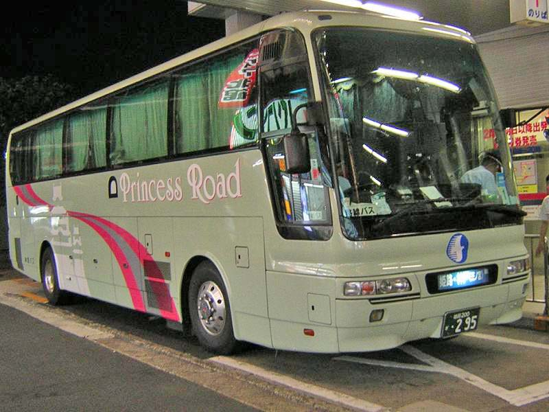 Shinki Bus 295