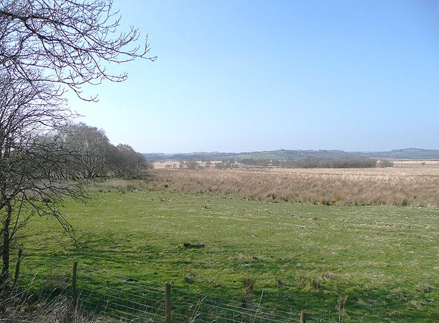 The Edge of Cors Caron, Ceredigion - geograph.org.uk - 1223077