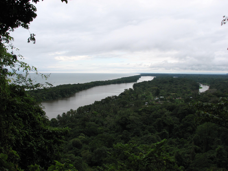 Tortuguero, tortugero national park