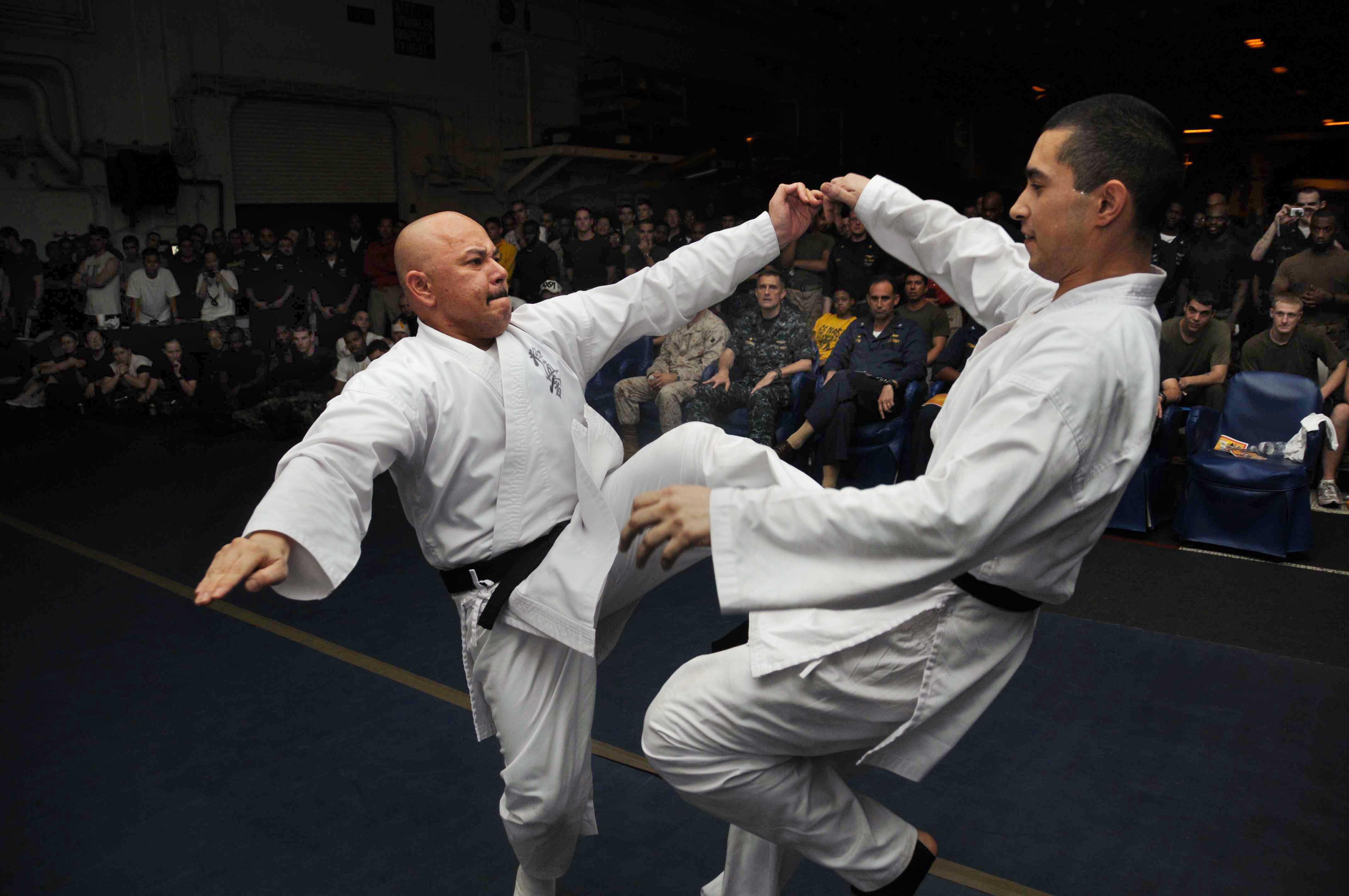 Discovering Kyokushin Karate