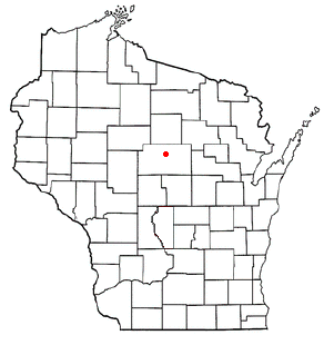 Stettin, Wisconsin Town in Wisconsin, United States