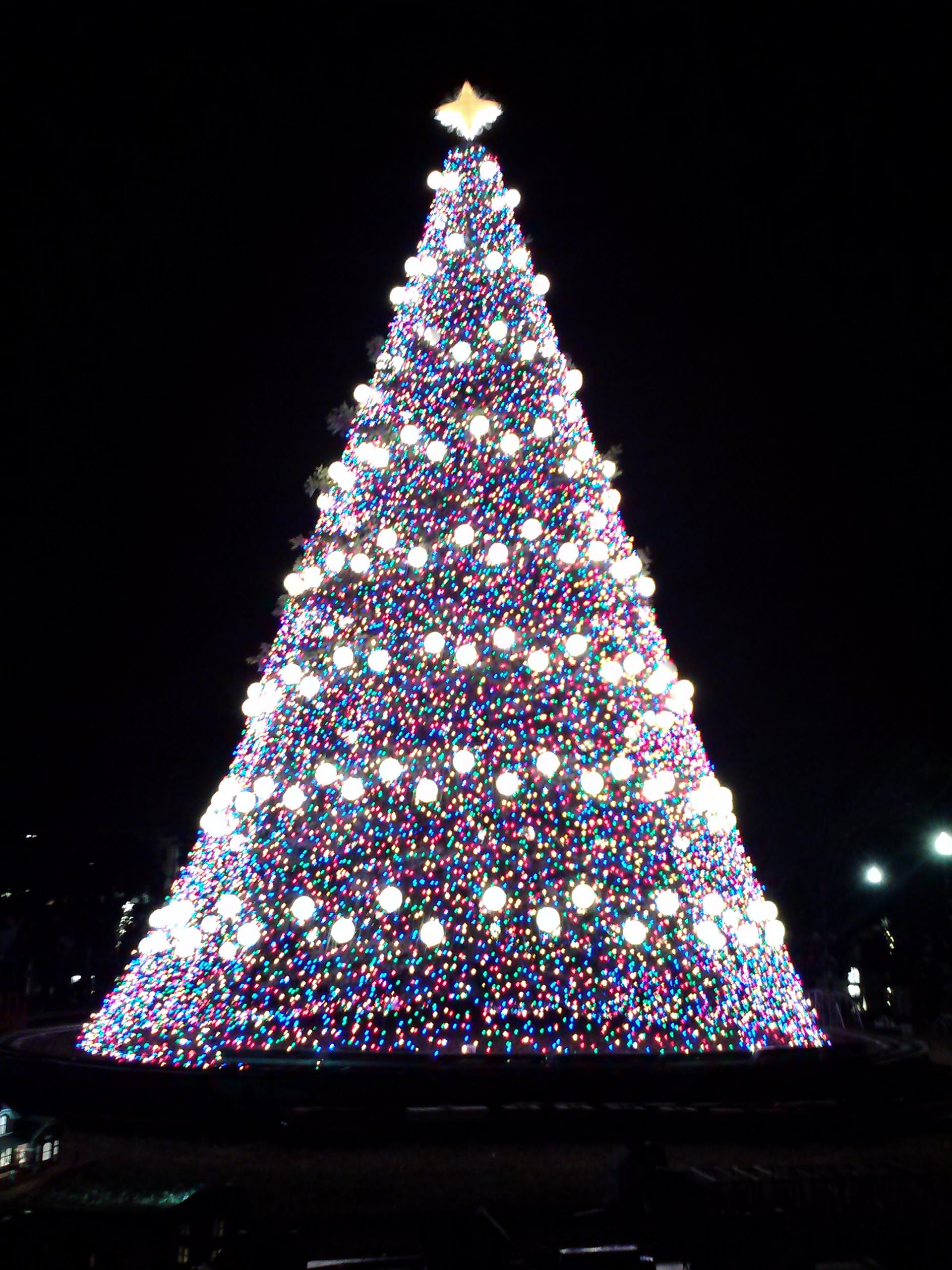 file 2013 national christmas tree jpg wikimedia commons
