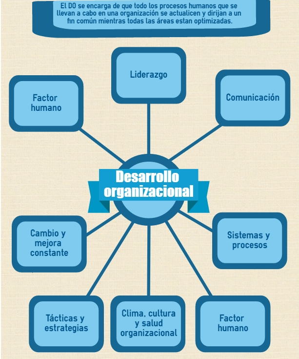 Historia de desarrollo organizacional pdf