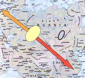 Reverse migration (birds) phenomenon in bird migration