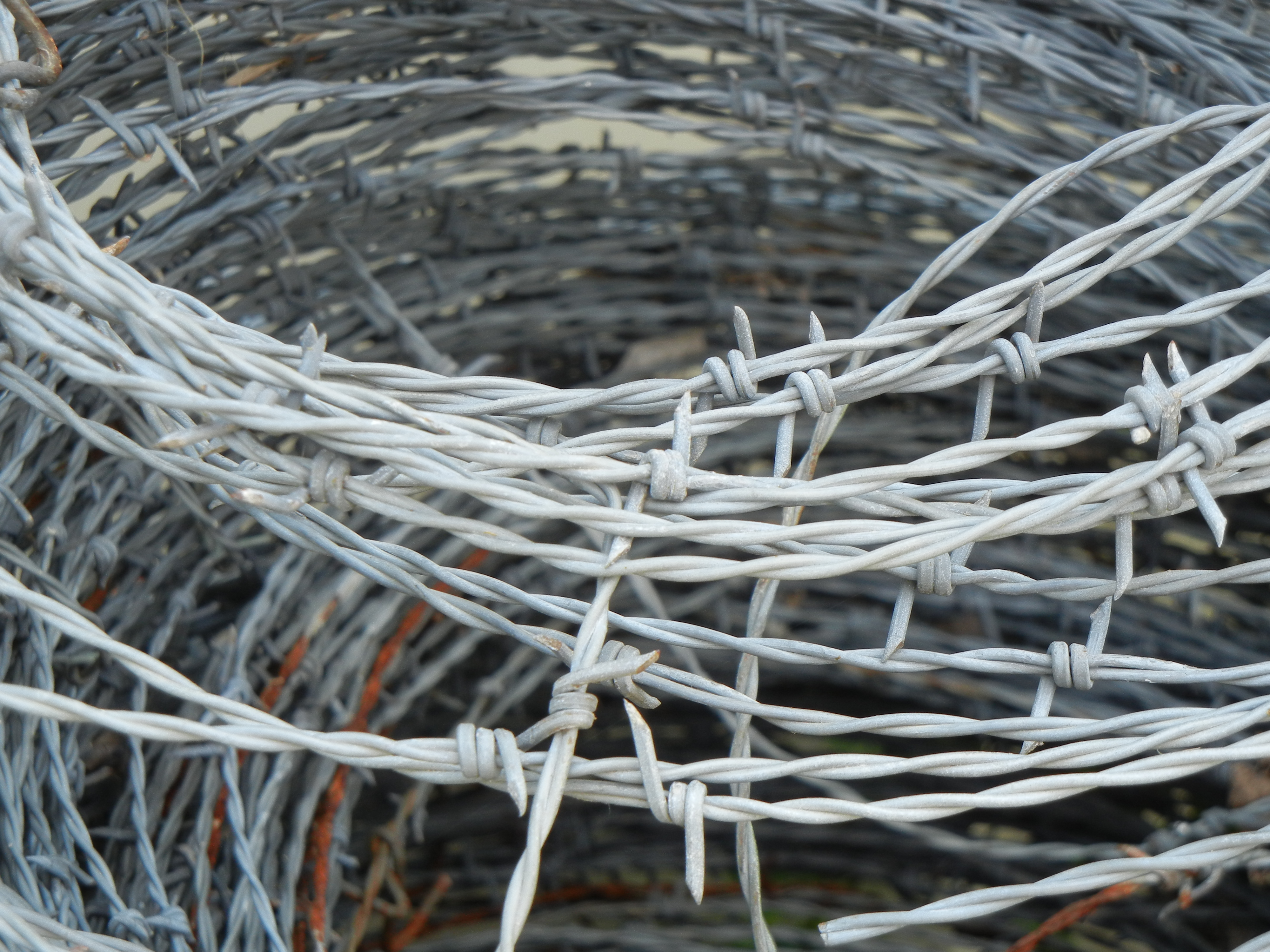 File:Barbed Wire Roll.jpg - Wikimedia Commons