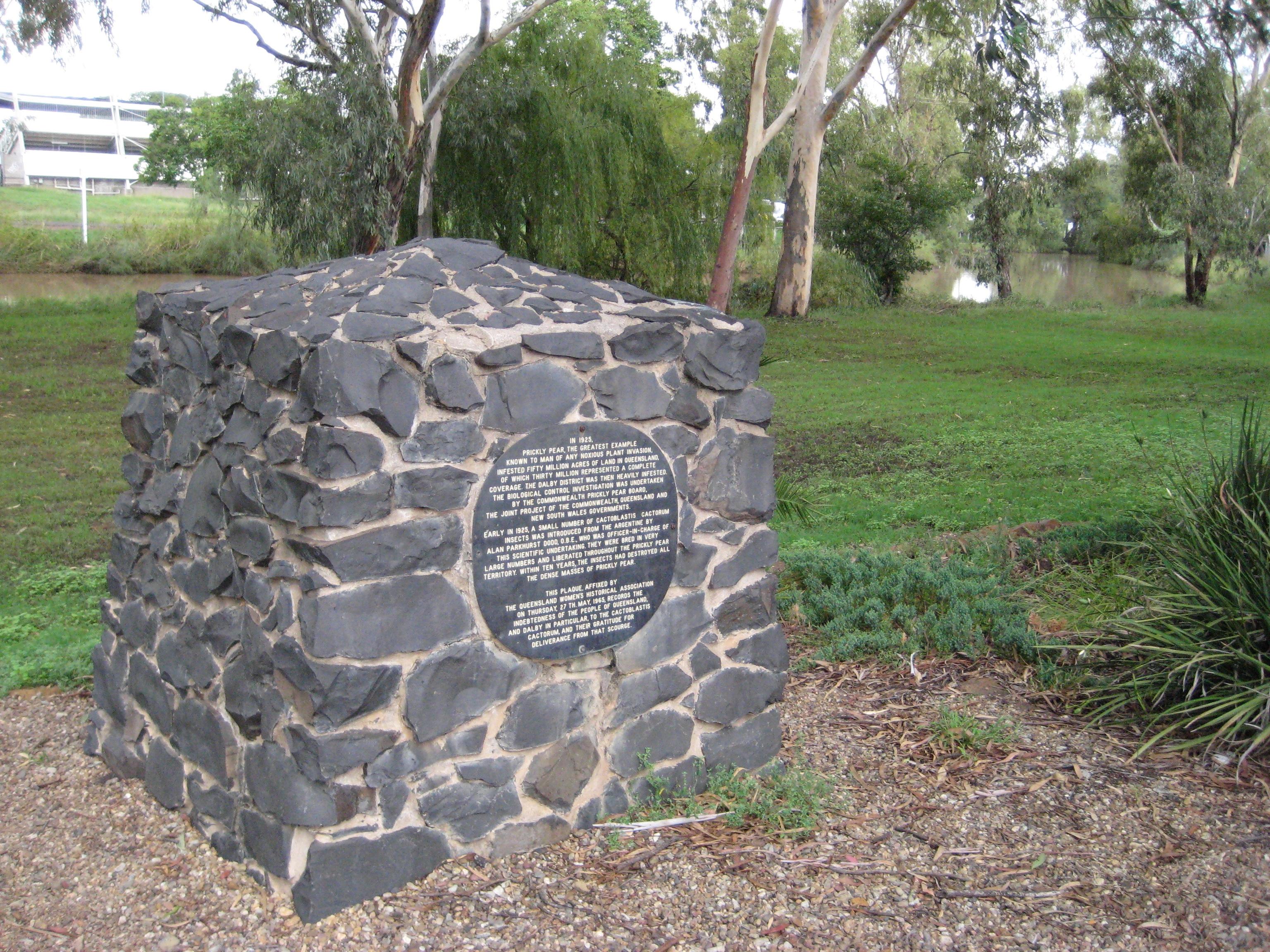 Dalby Australia  city images : Description Cactoblastis monument, Dalby, Queensland, Australia