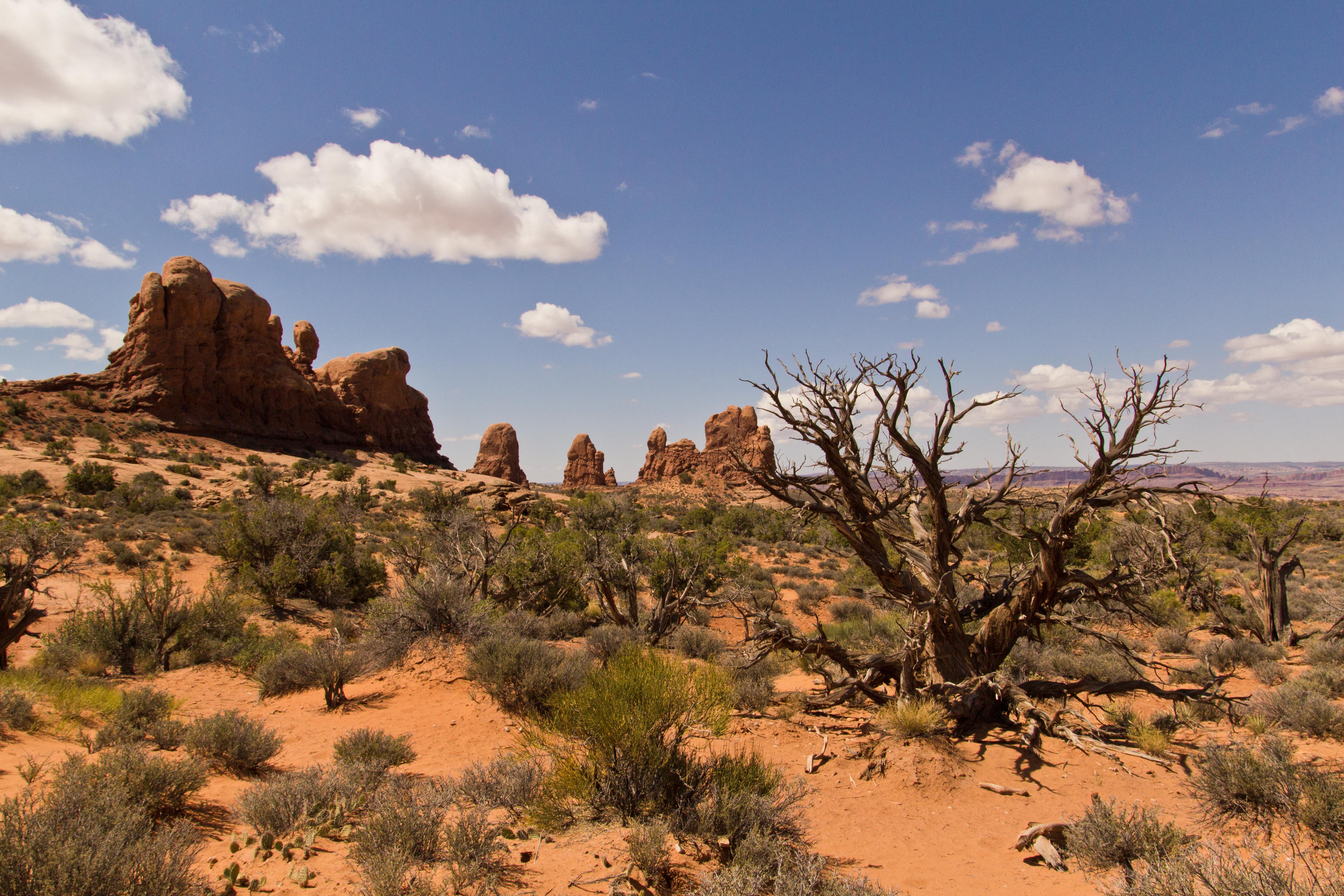 file desert landscape jpg wikimedia commons