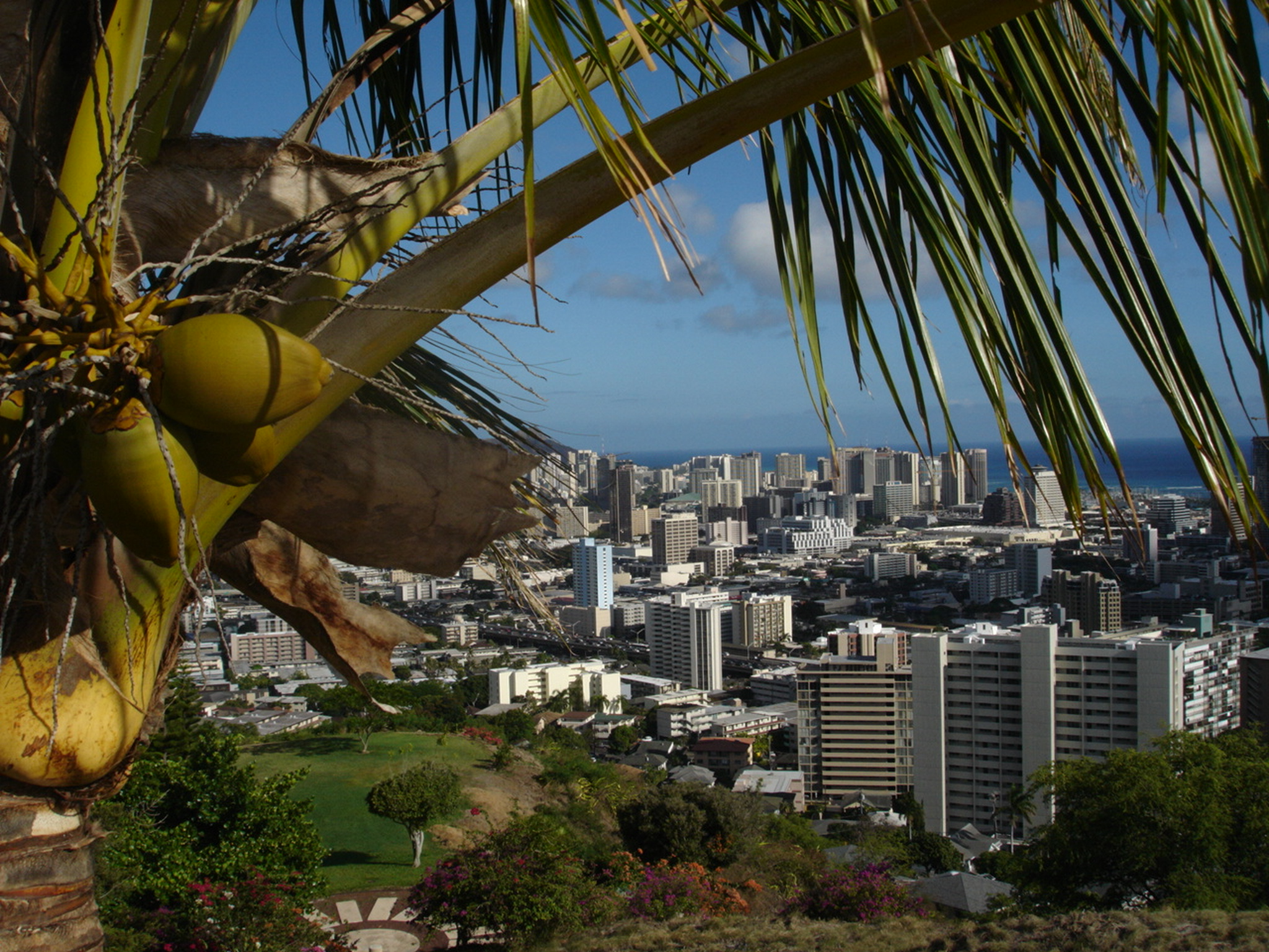 Honolulu Skyline.JPG