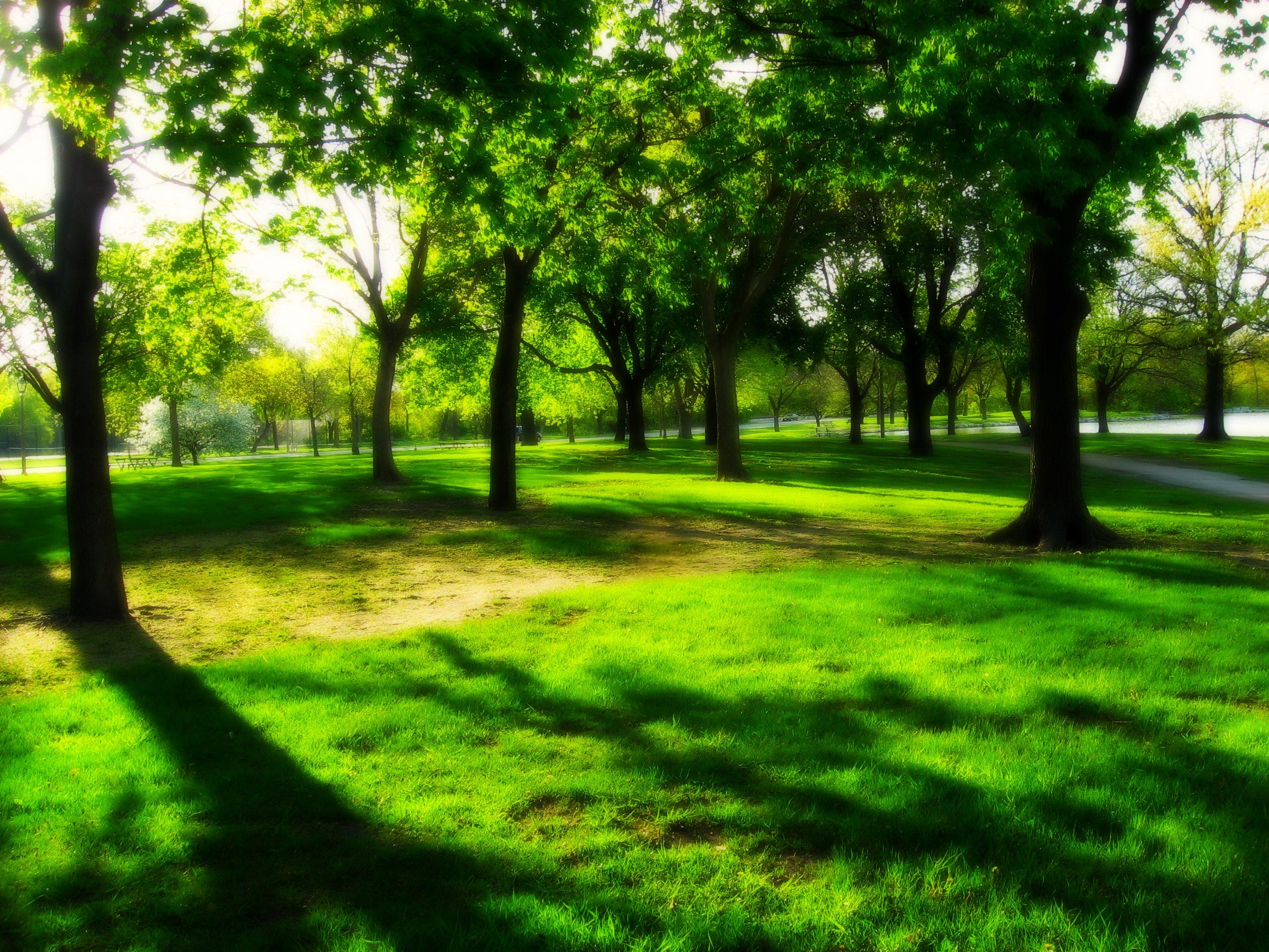 Nature Parks In Binghamton Ny