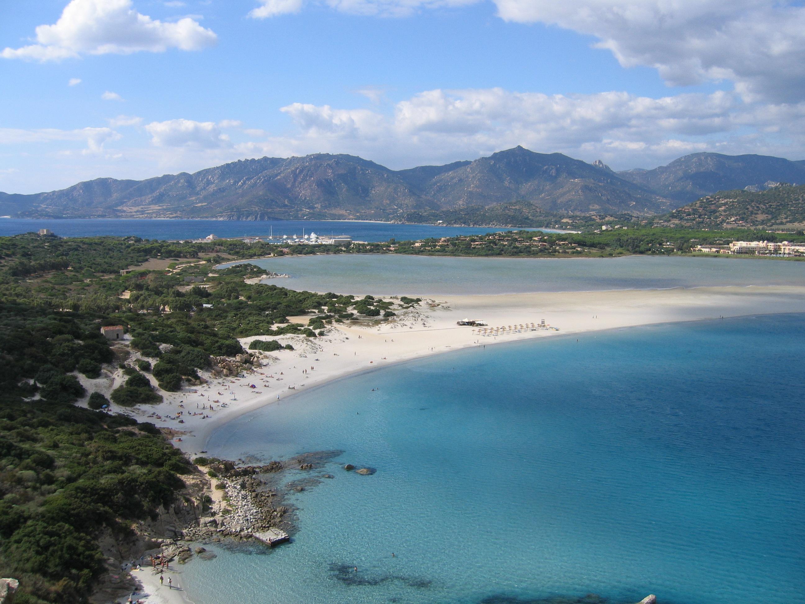 Что позволило сардинии стать лидером в процессе