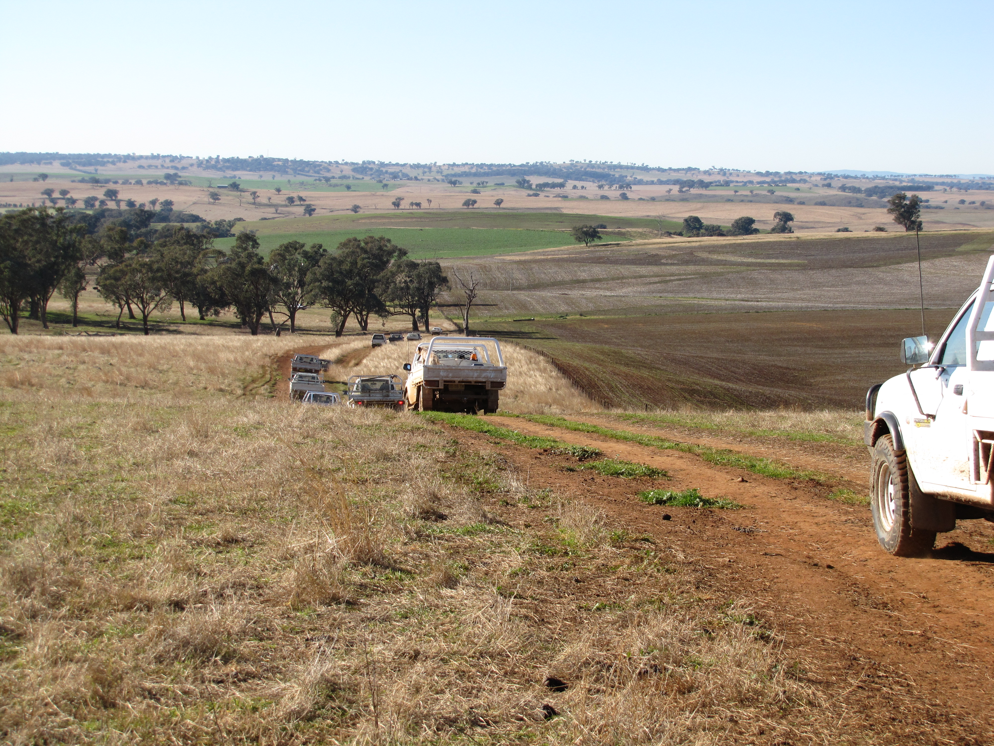 File landscape near cumnock wikimedia commons for Landscapers adelaide western suburbs