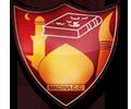 Madina logo.png