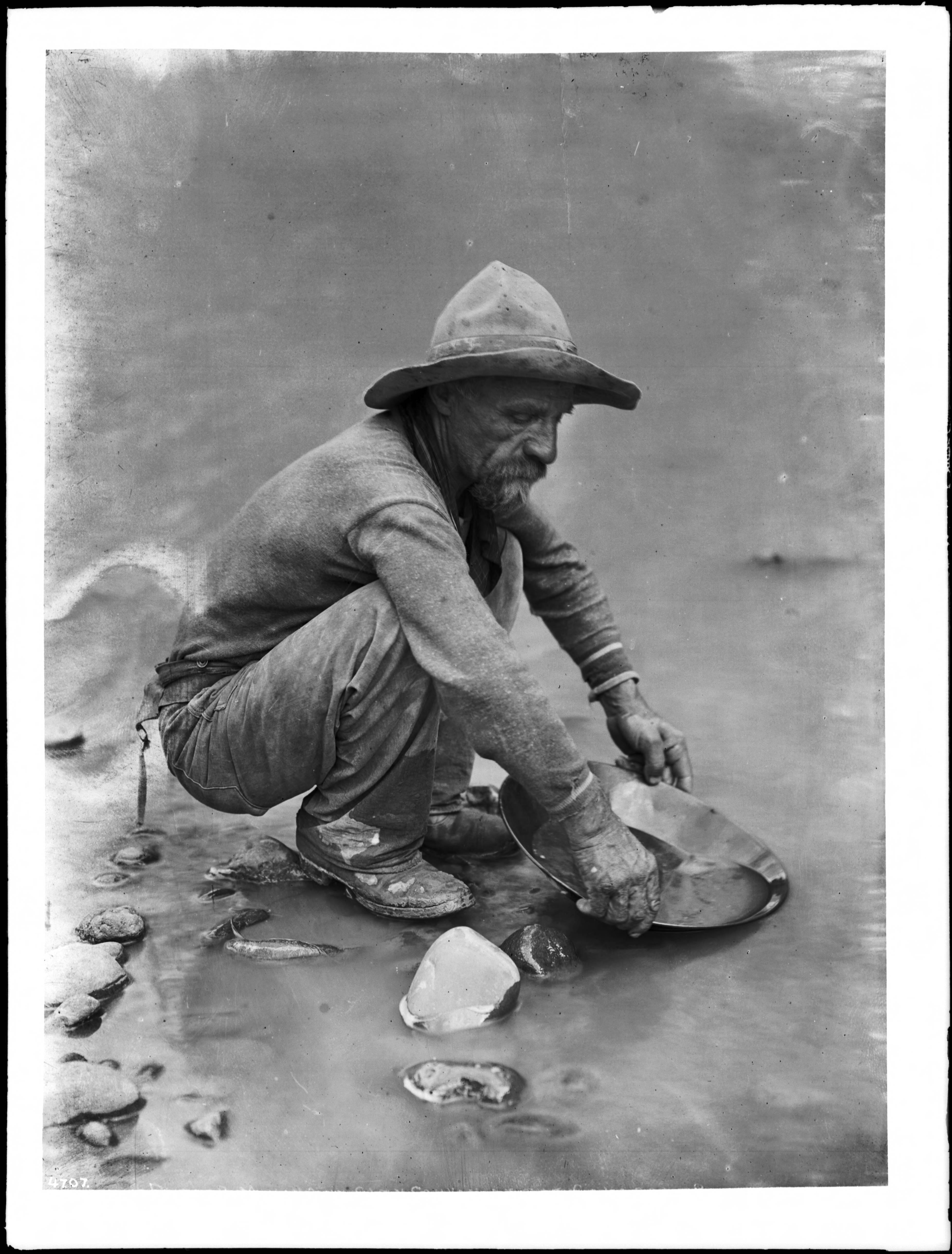 Miners Colorado Miner on The Colorado
