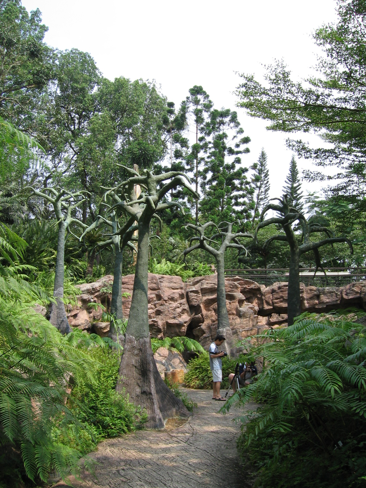 Evolution Garden* Evolution Garden, The - The Rehearsal Series, 240702