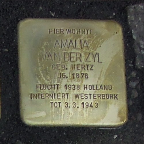 Stolperstein für Amalia van der Zyl