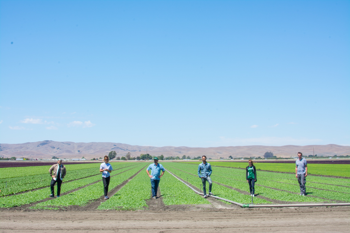 sweetgreen's Food and Beverage Team work with hundreds of suppliers from around the country. The team visits all of these farmers, big and small, to ensure the product's quality and sourcing meets the companies standards.