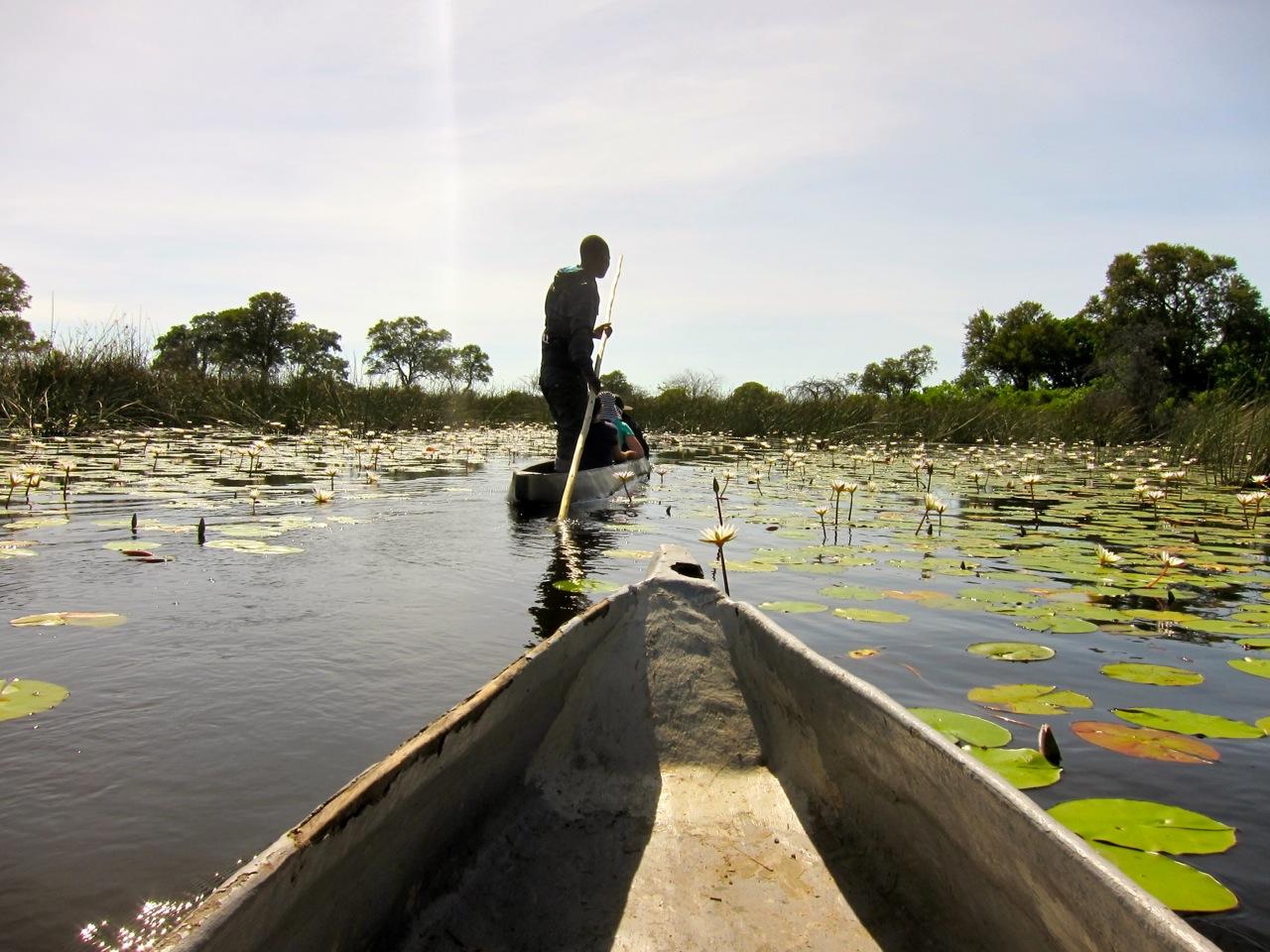"""Image result for mokoro canoe botswana"""""""