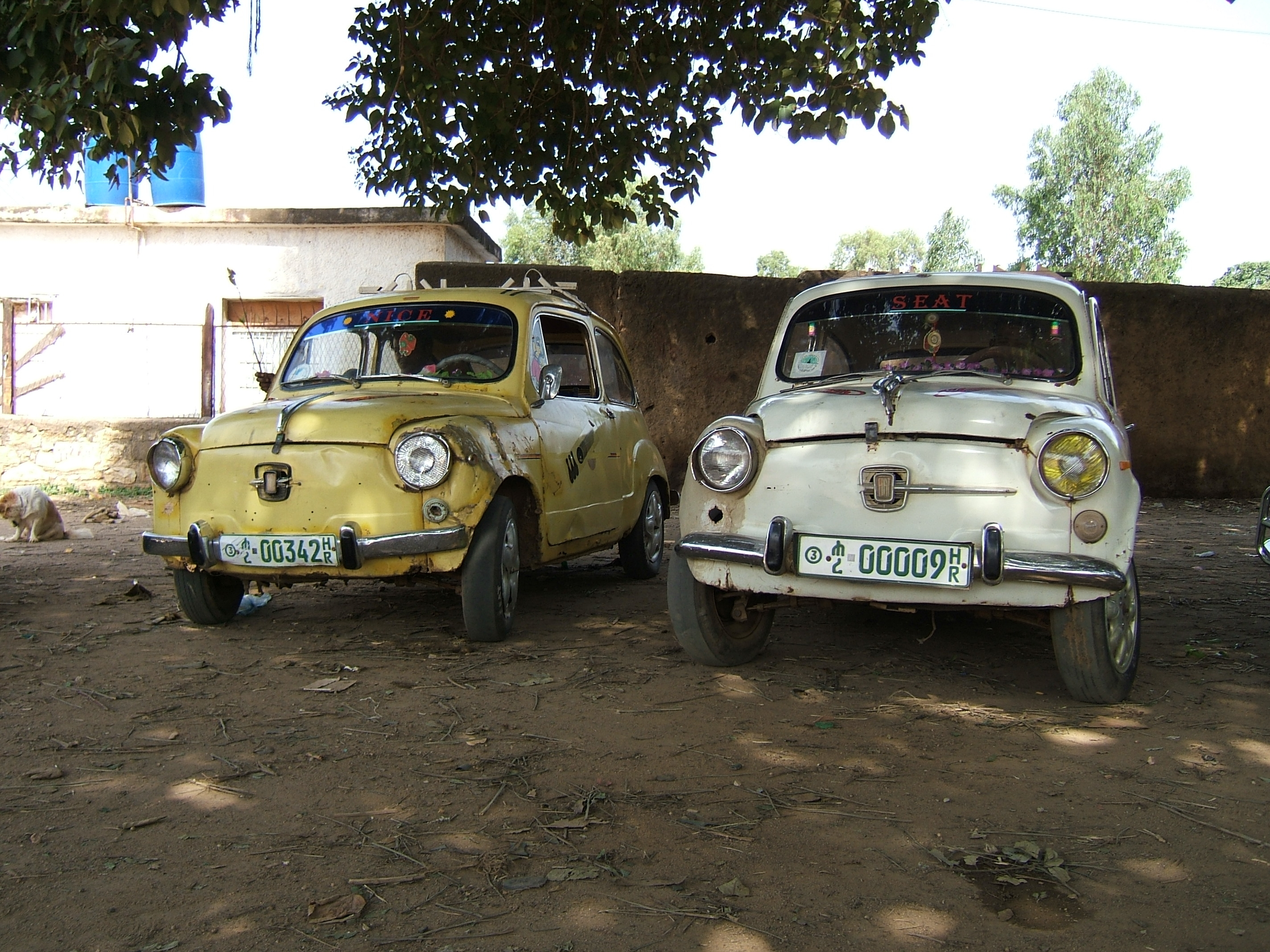 FileTwo Old Fiat Cars In Harer Ethiopiajpg Wikimedia Commons - Www fiat cars